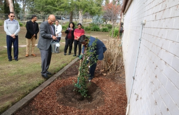 World Environment Day was observed by High Commission